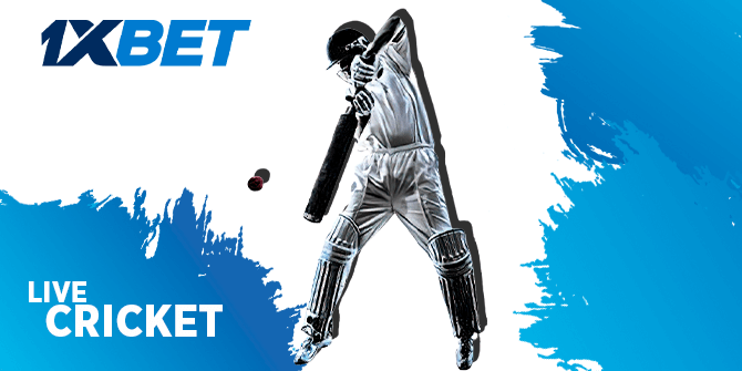 Live cricket bets at 1xBet